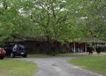 Foreclosed Home en PEANUT RD, Graceville, FL - 32440