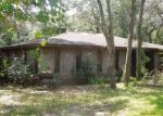 Foreclosed Home en UMBRELLA ROCK DR, Webster, FL - 33597