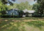 Foreclosed Home en BEN BOSTIC RD, Quincy, FL - 32351