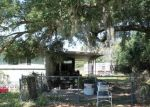 Foreclosed Home in NOBLES RD, Labelle, FL - 33935