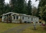 Foreclosed Home en MOSQUITO LAKE RD, Deming, WA - 98244