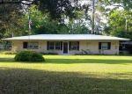 Foreclosed Home en LAKE HEIGHTS DR, Wewahitchka, FL - 32465