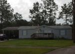 Foreclosed Home en RAMSHORN ST, Thonotosassa, FL - 33592