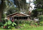 Foreclosed Home en NW 126TH AVE, Alachua, FL - 32615