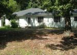 Foreclosed Home in S SHERWOOD DR, Charleston, SC - 29407