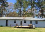 Foreclosed Home en DYKES FARM RD, Hazlehurst, GA - 31539
