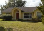 Foreclosed Home in NORTHGLEN DR, Clermont, FL - 34711