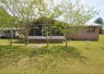 Foreclosed Home in NW STARDUST LN, Clarksville, FL - 32430