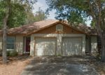 Foreclosed Home in MEGAN CT, Palm Harbor, FL - 34684