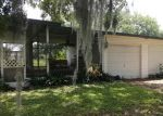 Foreclosed Home en RAMBLEWOOD PL, Mulberry, FL - 33860