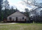 Foreclosed Home en FORESTWOOD LN, Woodruff, WI - 54568