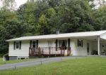 Foreclosed Home en DEANS BR, Marion, VA - 24354