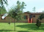 Foreclosed Home en MAYFLOWER ST, Middleburg, FL - 32068