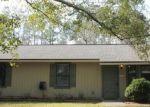 Foreclosed Home en DAISY ST, Middleburg, FL - 32068