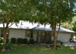 Foreclosed Home en NW 238TH ST, High Springs, FL - 32643