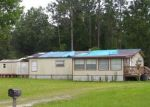 Foreclosed Home en OLD AIRPORT ESTATES RD, Palatka, FL - 32177