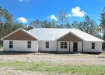 Foreclosed Home en LIBERTY CT, Hortense, GA - 31543