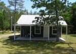 Foreclosed Home en WOOD WREN ST, Crestview, FL - 32539