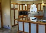 Foreclosed Home en E LOVEJOY RD, Perry, MI - 48872