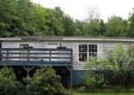 Foreclosed Home en JOHNSON RD, Springville, PA - 18844