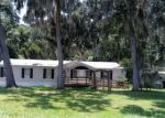 Foreclosed Home en NE 219TH TER, Melrose, FL - 32666