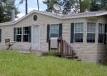 Foreclosed Home en MAGNOLIA CT, Georgetown, FL - 32139