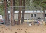 Foreclosed Home en PLATEAU RD, Alberton, MT - 59820