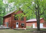 Foreclosed Home en S EVERGREEN RD, Baldwin, MI - 49304