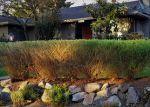 Foreclosed Home in ALTON AVE NE, Seattle, WA - 98125