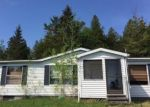 Foreclosed Home en DEMOCRAT RD, De Tour Village, MI - 49725