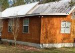 Foreclosed Home en SANCTUARY PATH, Grand Ridge, FL - 32442