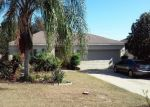 Foreclosed Home en WATER FERN CIR, Clermont, FL - 34711