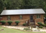Foreclosed Home en POND RD, Ararat, VA - 24053