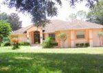 Foreclosed Home en HARBOR HILLS BLVD, Lady Lake, FL - 32159