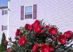 Foreclosed Home en SHERMAN ST, Passaic, NJ - 07055
