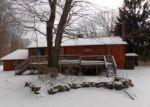 Foreclosed Home en ELK POINT RD, Livingston Manor, NY - 12758