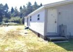 Foreclosed Home in N BRINTON RD, Lake, MI - 48632