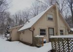 Foreclosed Home en ROGERS RD, Fairview, MI - 48621