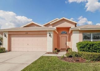 Foreclosure Home in Pasco county, FL ID: F1035754
