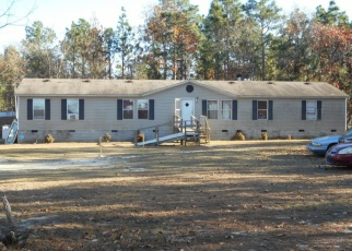 Foreclosed Home en HASS LUCAS RD, Gaston, SC - 29053