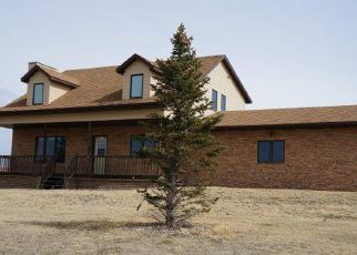 Foreclosed Home in 206TH ST, Pierre, SD - 57501