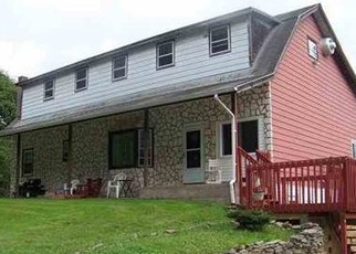 Foreclosed Home en WHITE ROE LAKE RD, Livingston Manor, NY - 12758