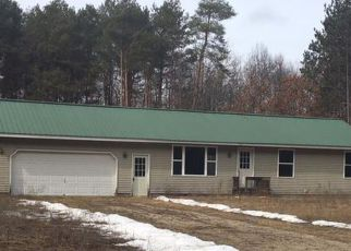 Foreclosure Home in Osceola county, MI ID: F2694984