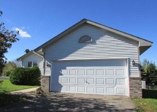 Foreclosure Home in Wright county, MN ID: F2757723
