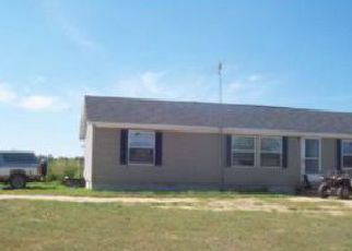 Foreclosure Home in Emmet county, MI ID: F3201372