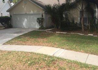 Foreclosed Home in ESPRIT DR, Tampa, FL - 33647