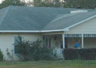 Foreclosed Home en CASTLEWOOD DR, Wewahitchka, FL - 32465