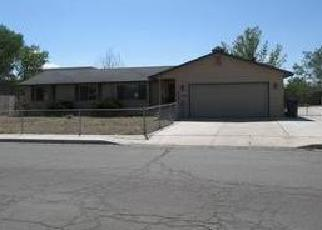 Foreclosure Home in Fernley, NV, 89408,  FLINT ST ID: F3789868