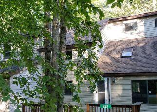 Casa en ejecución hipotecaria in Pocono Lake, PA, 18347,  PAXINOS DR ID: F3811293