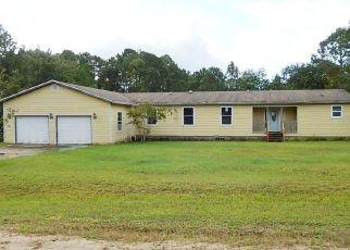 Casa en ejecución hipotecaria in Clay Condado, FL ID: F3877127
